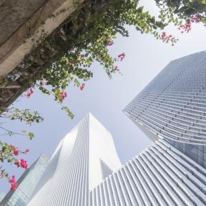عکس - 15 دلیل معتبر که نشان می دهد سال 2018 رکورد سازه های بلند و مرتفع را شکسته است.