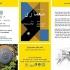 عکس - نگاهی تحلیلی بر مسابقات معماری