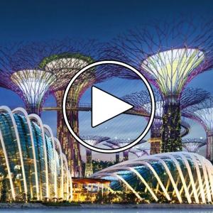 عکس - Gardens by the Bay , اثر تیم طراحی Wilkinson Eyre , سنگاپور