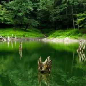 عکس - دریاچهٔ چورت ( دریاچهٔ میانشه )