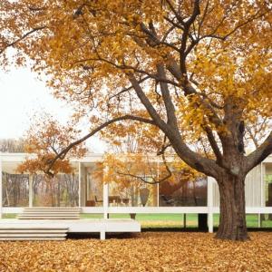 تصویر - خانه Fransworth , اثر Mies Van Der Rohe , آمریکا , سال 1950 - معماری