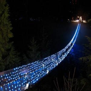 تصویر - پل معلق و منحصربفرد کاپیلانو ، ونکوور کانادا  - معماری