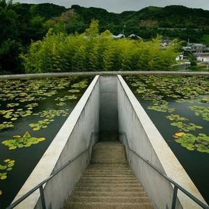 تصویر - معبد آب ( Water Temple ) , اثر تادوئو آندو , سال 1991 میلادی - معماری