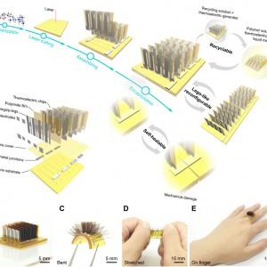تصویر - حلقه ای که گرمای بدن شما را به باتری تبدیل کرده و خود را بازسازی می کند. - معماری