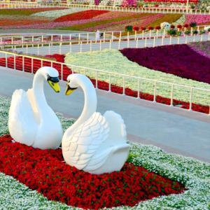 تصویر - بزرگترین باغ گل جهان،درشهری با اقلیم بیابانی - معماری